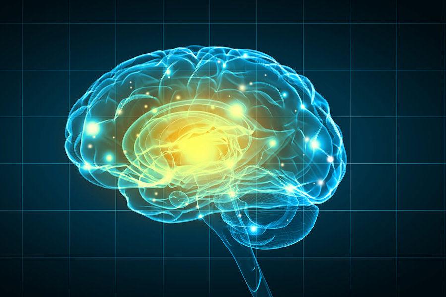 Sclérose Latérale Amyotrophique (SLA), tout ce qu'il faut savoir