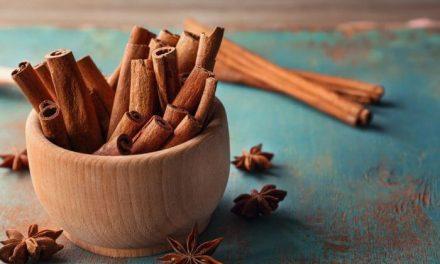 La cannelle, une épice riche en goût et en bienfaits : voici toutes ses propriétés et son mode d'emploi