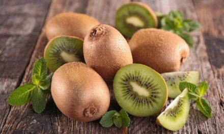 Kiwi : les propriétés nutritionnelles et les utilisations moins connues de ce fruit